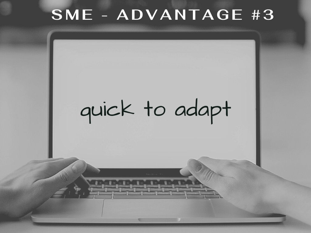 sme advantage - quick to adapt to economic and marketing changes
